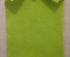 047 T-OG-Lime Organic Cotton Jersey