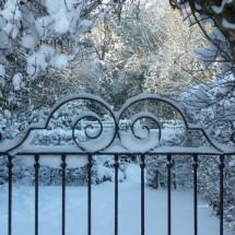 garden_winter[1]