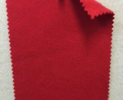 789 FT-CP-Red 90% Combed Cotton 10% Poly Fleece RED # VER 19
