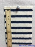 846 S-C-ENvy Stripe Heavy Interlock INCH Ruler